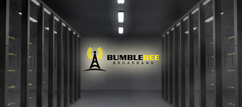 Bumble Bee Cover image